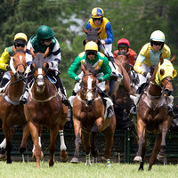 2015 High Hope Steeplechase